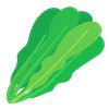 葉 草 野菜
