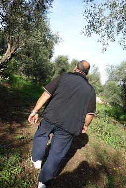 農園を歩くサルバトーレ氏